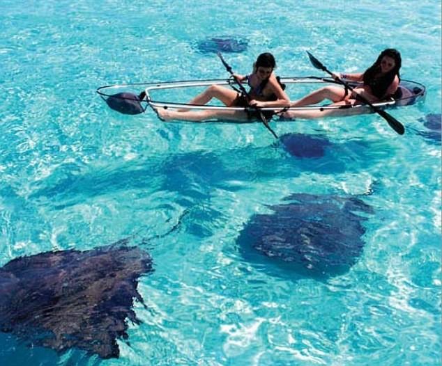 canoa-trasparente-cinese2