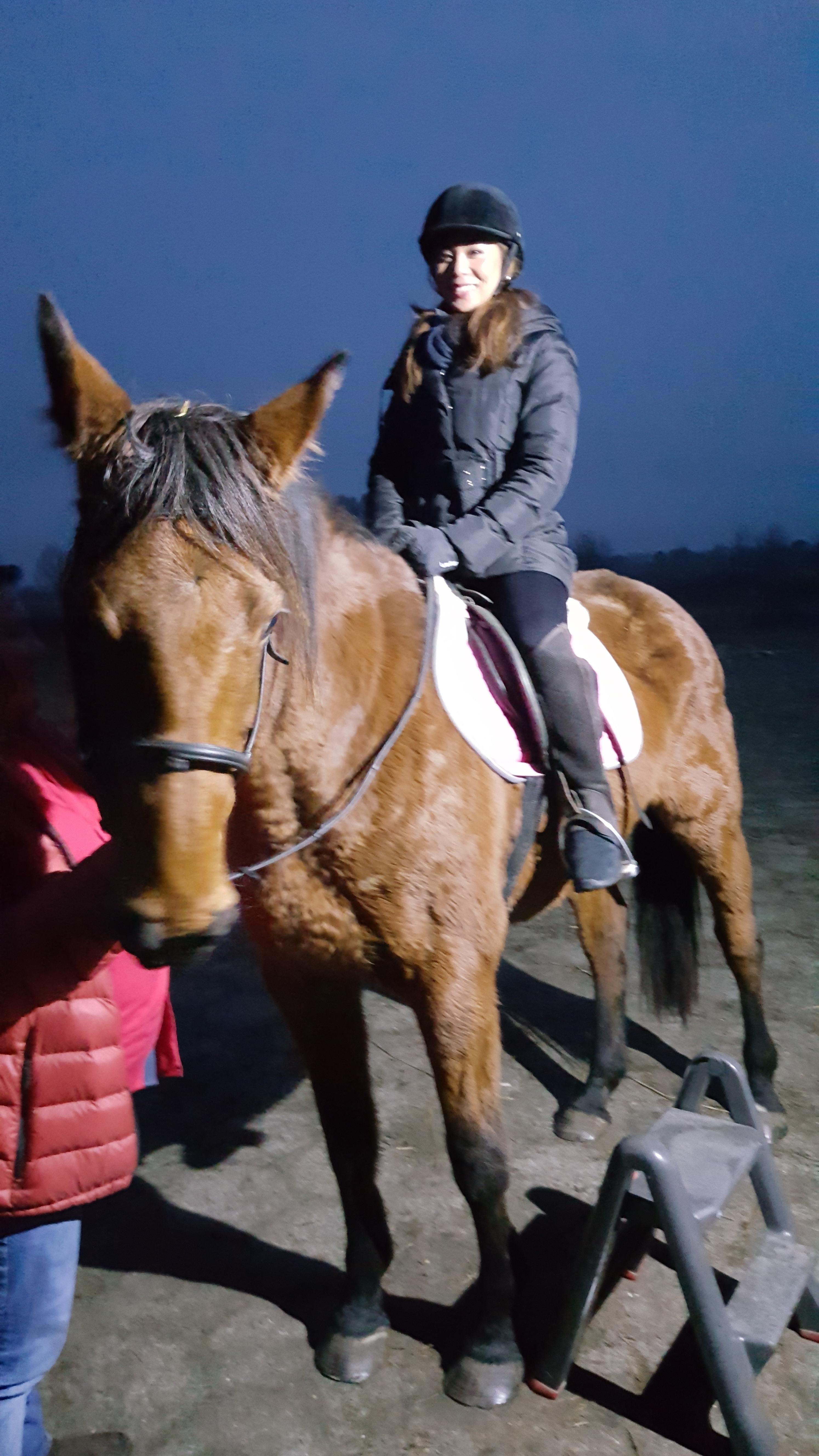 cavalli-in-polonia