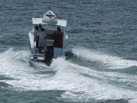 la-orca2