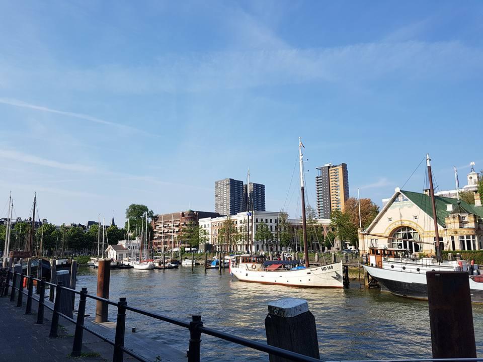 paesaggi-rotterdam2