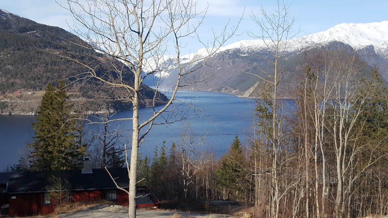 panorama-bergen