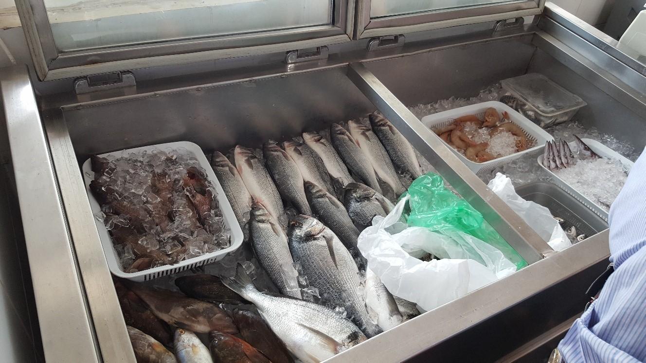peschereccio_libano
